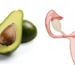 авокадо - матка